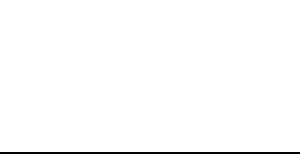 Vizell White Logo